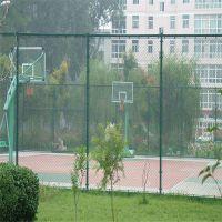 足球场护栏网安装 球场勾花护栏 体育场围栏图片