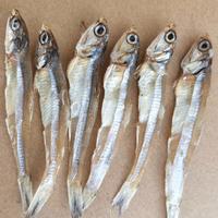 北海银鱼白饭鱼白公鱼批发