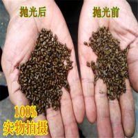 多功能粮食抛光机 黑小米除尘提亮机 小黄米去米糠抛光机糜子米加工