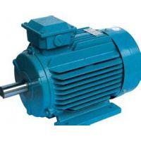 唐山佛朗克FRPM22037-S-A44永磁同步电机