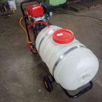 科圣 环保绿化专用手推式打药机 蔬菜基地喷雾器
