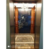 杏林伟业(图)-螺杆式家用电梯-家用电梯