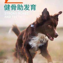 成犬中小型犬犬粮机械 幼犬营养型犬粮 成犬1-6岁狗粮加工机械