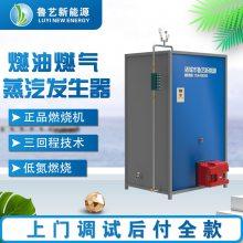 鲁艺 加工销售工业锅炉 燃气蒸汽炉 生物质热水炉蒸汽发生器