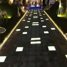 北京园林灯砖水下地埋灯植物景观灯