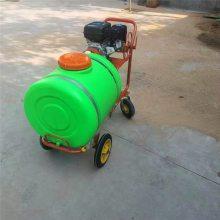 亚博国际真实吗机械 柴油风送式打药机 座驾式三轮车打药机 可乘坐风送式打药机