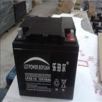 原装乐珀尔蓄电池LP55-12 紧急机房备用电池 12V55AH厂家