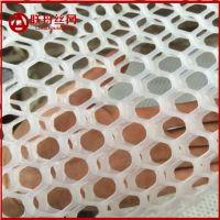 塑胶网片 白色圆孔塑料平网 全新料质保十年