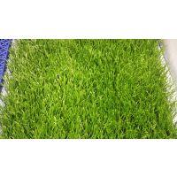 辽宁省大连市瓦房店市仿真草皮环保地毯供应