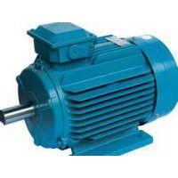佛朗克FRPM-31090-M-A46永磁同步高效电机