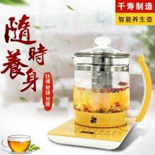 千寿康养生壶家用多功能养生壶煮茶壶煎药壶电热烧水壶花茶壶