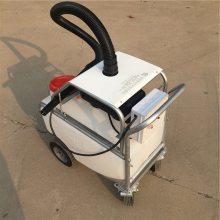 养殖场远程喷雾消毒车 蔬菜基地手推式喷药机 园林绿化杀虫喷药机