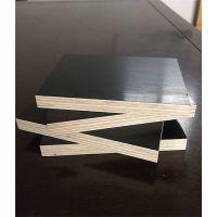 松木清水模板采购-齐远木业(在线咨询)-湖北松木清水模板