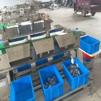 厂家热销水产品分选秤 自动重量分级别机