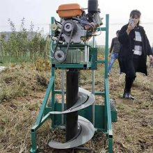 双人电线杆打眼机 果树施肥打眼机图片 种树挖坑机