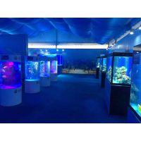 海洋文化主题活动 美人鱼演出 海洋展方案报价