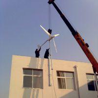晟成批发300瓦家用风力发电机 价格优惠纯铜永磁 手摇式300w微型风力发电机