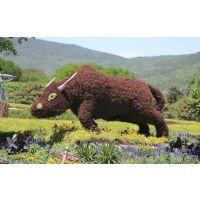 成都鑫森蕴真植物造型 贵州雕塑 遵义孔雀制作