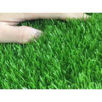 供应陕西幼儿园 仿真地毯草坪室内外草坪彩虹跑道