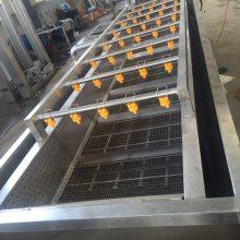 胡萝卜清洗加工生产线 叶类蔬菜加工流水线