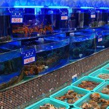 平潭海鲜池-海鲜池出售-福州鑫宇海鲜池定制(诚信商家)