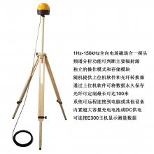 910型手持式辐射扫描仪