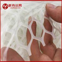 安平塑料平网厂 联舟小孔塑料平网 鸭垫网