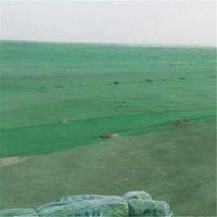 盖土网 渣土覆盖网 盖土塑料网