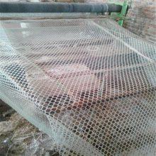 养殖塑料网 小鸡踩踏网 鸡舍漏粪网