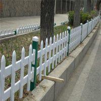 城市道路绿化围栏工程 绿化带护栏 草池建设工程围栏