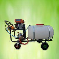 亚博国际真实吗牌 轻型园林使用弥雾机 新型园林高压喷药 消毒喷洒机 路边草丛手推式汽油打药机