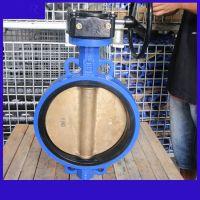 D371XT-10C DN300涡轮对夹脱硫铝青铜蝶阀
