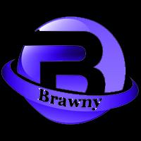 山东布朗尼机械设备有限公司