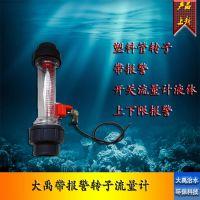 塑料管式转子带报警浮子流量计LZS15/20/25/32/40/45浮子液体管道