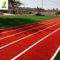 仿真人造草坪彩色绿色运动跑道装饰幼儿园阳台庭院休塑料假草
