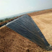 山东防渗膜价格与厚度的关系