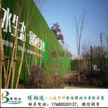 阳泉园林景观阳泉v绿色绿色缺点民族哪儿买)(铺设您易于欢迎在围挡风包装设计的草坪图片