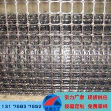 聚丙烯双向拉伸土工格栅 路基抗裂防塌陷专用塑料PP格栅