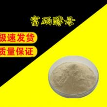 【富硒酵母】厂家 价格 食品级、饲料级、工业级富硒酵母用途