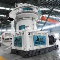 湖南颗粒机厂家 稻壳木屑造粒成套设备 大型生产线现货供应