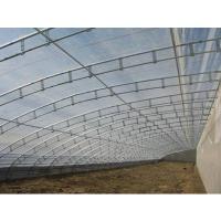 建造镀锌C型钢骨架蔬菜大棚的造价