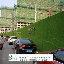 屋面人造草坪哪家便宜