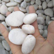 纯白石英鹅卵石价格,沧州永顺石英鹅卵石批发