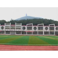 运动跑道2.5公分PE材质红绿色人造草坪学校操场跑道绿色人造草皮