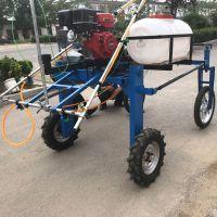 雾化绿植喷雾器/高射程20米打药机/花卉灭虫喷雾器价格