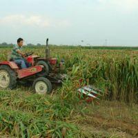 艾草黑麦草收割机 芦苇柳条收割机 牧草柴油割晒机厂家