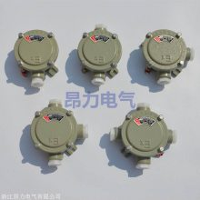 四通防爆接线盒BHC 6分一寸防爆分线盒价格表
