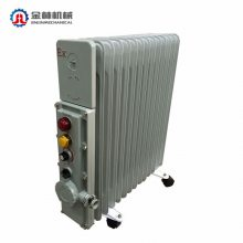 现货 BDR51系列 防爆密闭式电热油汀 BDN58系列 防爆取暖器电热器