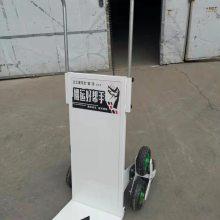 供应800W无刷直流电机爬楼车 载物建筑建材家电爬楼车