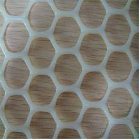 原料塑料养殖网 塑料牵伸网 小鸡养殖网